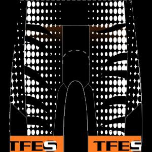 TFES GoFierce Tri Shorts